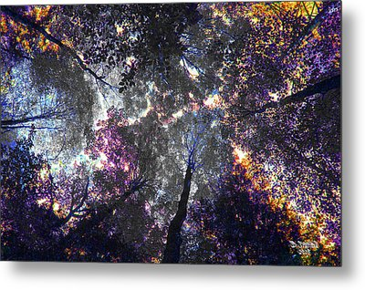 Autumn Abstract Metal Print by David Stasiak