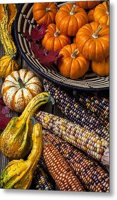Autumn Abundance Metal Print by Garry Gay