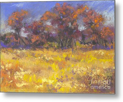 Autumn Afternoon Metal Print by Grace Goodson