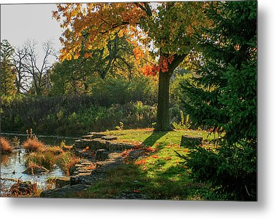 Autumn Along Deer Creek In Forest Park Metal Print by Garry McMichael