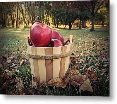 Autumn Apples At Dusk Metal Print