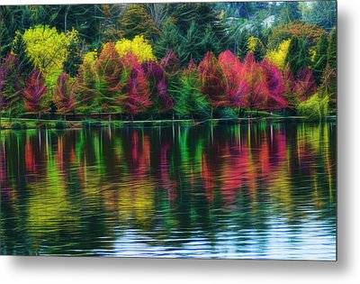 Autumn At Green Lake Seattle Metal Print by Yulia Kazansky