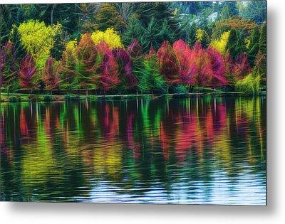 Autumn At Green Lake Seattle Metal Print