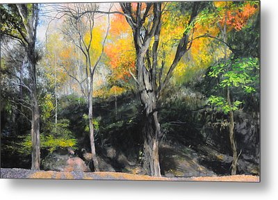 Autumn At Loggerheads Metal Print