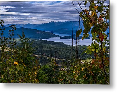 Autumn At Priest Lake Metal Print by Yeates Photography
