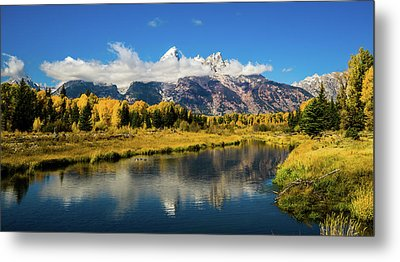 Autumn At Schwabacher's Landing Metal Print by TL Mair