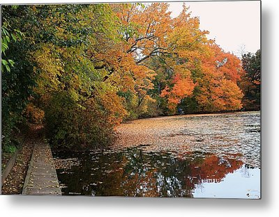 Autumn At The Lake Metal Print by Mikki Cucuzzo