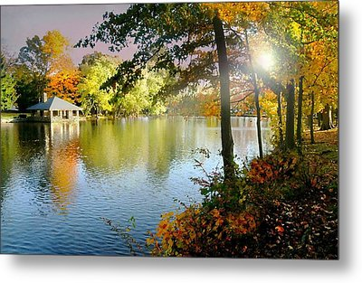 Autumn At Tilley Pond Metal Print by Diana Angstadt