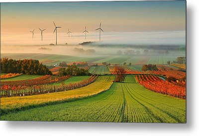 Autumn Atmosphere In Vineyards Metal Print by Matej Kovac