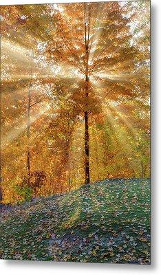 Autumn Beams Metal Print