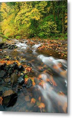 Autumn Beneath Metal Print by Mike  Dawson