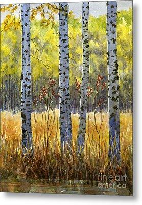 Autumn Birch Trees In Shadow Metal Print by Sharon Freeman
