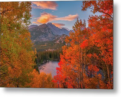 Autumn's Breath Metal Print by Darren White