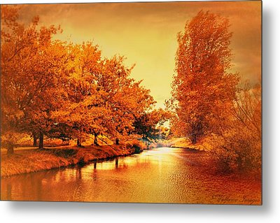 Autumn Breeze Metal Print by Wallaroo Images