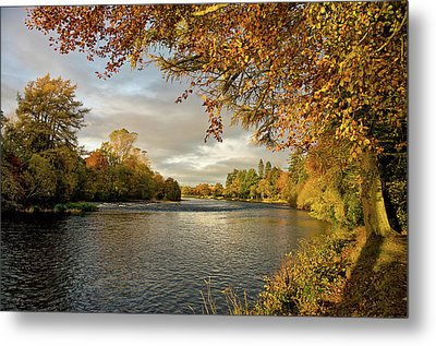 Autumn By The River Ness Metal Print by Jacqi Elmslie