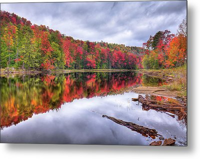 Metal Print featuring the photograph Autumn Color At The Pond by David Patterson
