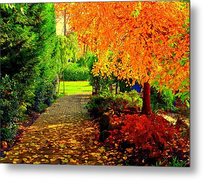 Autumn Colors Metal Print by Aron Chervin