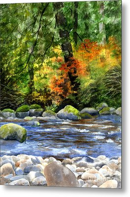 Autumn Colors In A Forest Metal Print by Sharon Freeman