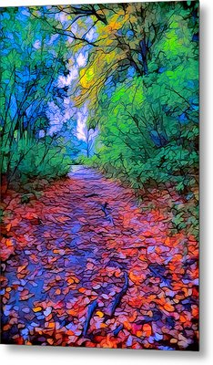 Autumn Colors In The Woods Metal Print by Lilia D