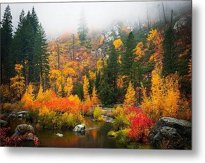 Metal Print featuring the photograph Autumn Colors Symphony by Dan Mihai