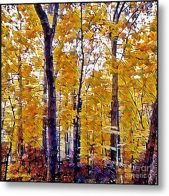 Autumn  Day In The Woods Metal Print