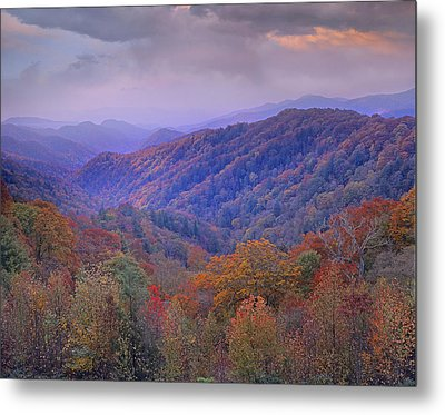Autumn Deciduous Forest Great Smoky Metal Print by Tim Fitzharris