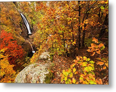 Autumn Falls Metal Print by Evgeni Dinev