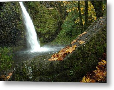 Metal Print featuring the photograph Autumn Falls by Lori Mellen-Pagliaro
