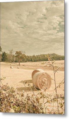 Autumn Farming And Agriculture Landscape Metal Print