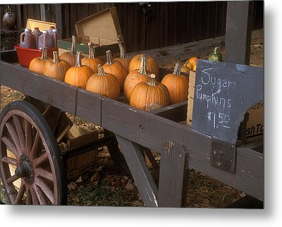 Autumn Farmstand Metal Print