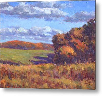 Autumn Fields Metal Print by Michael Camp