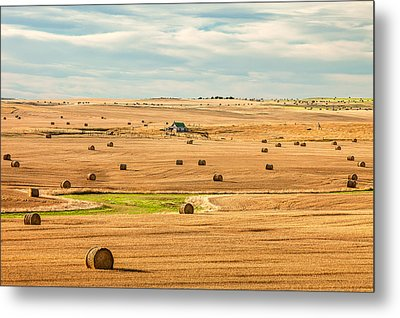 Autumn Fields Metal Print by Todd Klassy