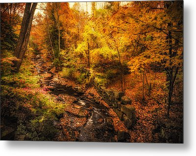 Metal Print featuring the photograph Autumn Flow by Robert Clifford
