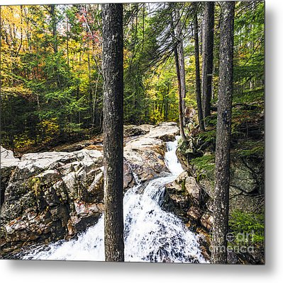 Metal Print featuring the photograph Autumn Flows by Anthony Baatz