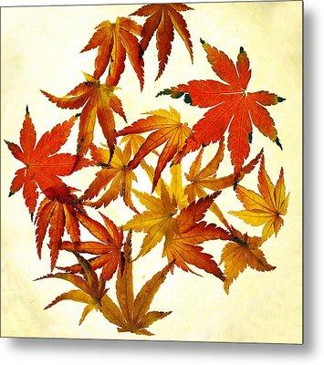 Autumn Flury Metal Print by Rebecca Cozart