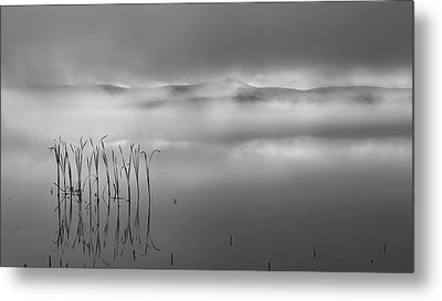 Metal Print featuring the photograph Autumn Fog Black And White by Bill Wakeley