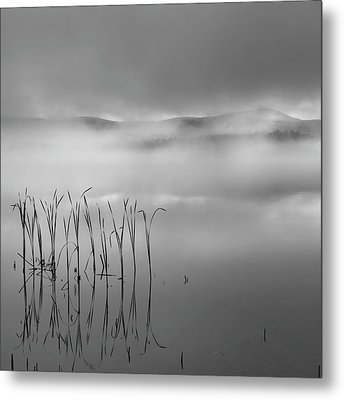 Autumn Fog Black And White Square Metal Print by Bill Wakeley