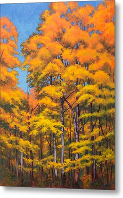 Autumn Forest 1 Metal Print