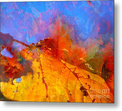 Autumn Fusion 1 Metal Print by Jeff Breiman