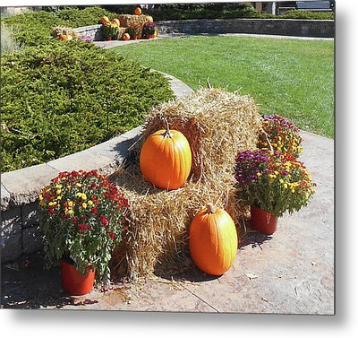 Metal Print featuring the photograph Autumn Gifts Harvest Time  by Irina Sztukowski