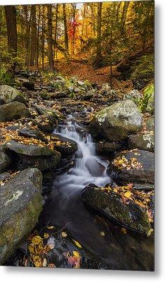 Autumn Glory At Bushkill Falls State Park Pennsylvania Usa Metal Print