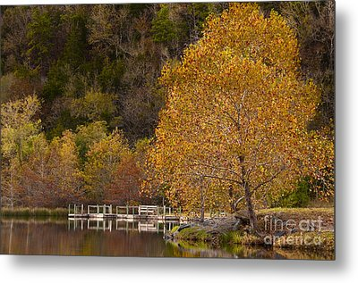 Metal Print featuring the photograph Autumn Glory In Beaver's Bend by Tamyra Ayles
