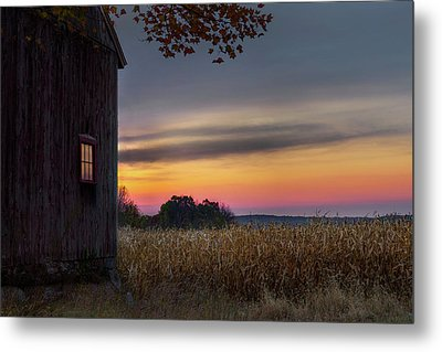 Autumn Glow Metal Print by Bill Wakeley