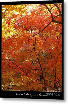 Autumn Gold Poster Metal Print by Carol Groenen