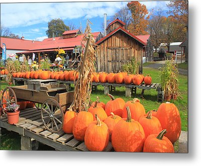 Autumn Harvest Pumpkins And Sugar House Metal Print by John Burk