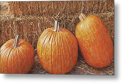 Autumn Harvest Metal Print by Steve Ohlsen