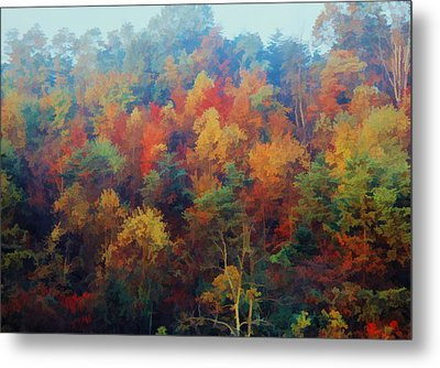 Metal Print featuring the photograph Autumn Hill Aglow by Diane Alexander