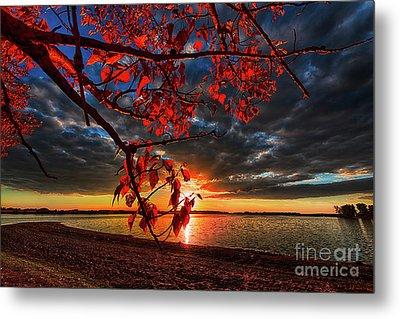 Autumn Illumination Metal Print by Ian McGregor