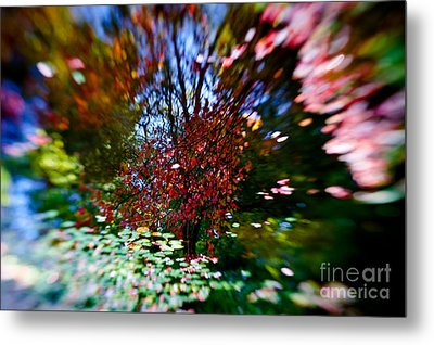 Autumn Impressions 2 Metal Print by Venetta Archer
