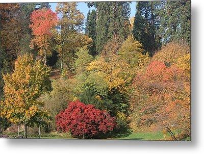 Autumn In Baden Baden Metal Print